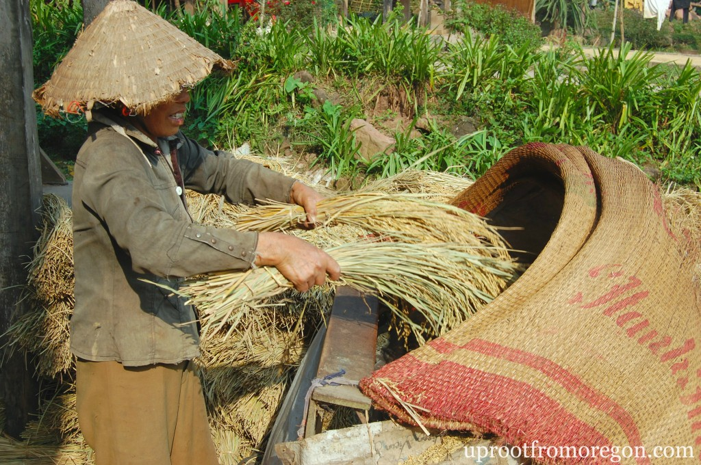 Vietnam Rice Threshing Machine