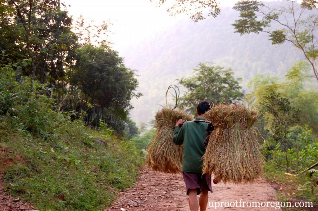 Vietnamese White Thai Village