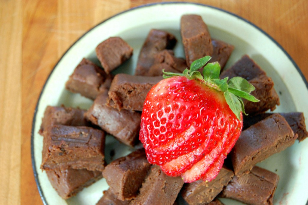Gluten Free Fudge made with Soft Tofu and Crackers in 10 Minutes