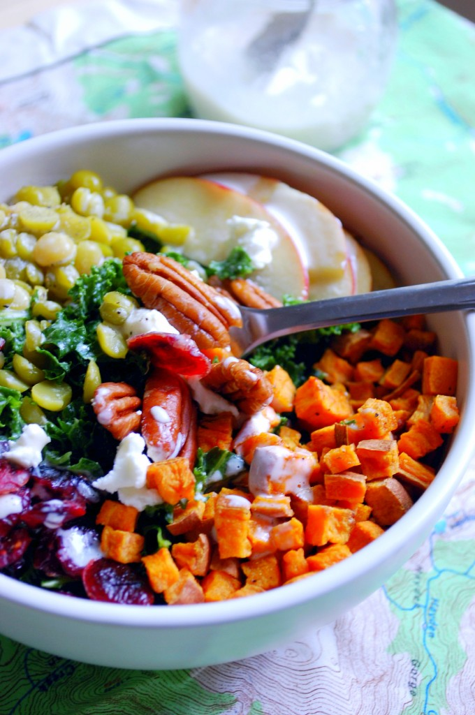 Fall Harvest Kale Salad with lentils, sweet potato, cranberry, apple, pecans and goat cheese