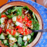 Simple Warm Lentil Salad