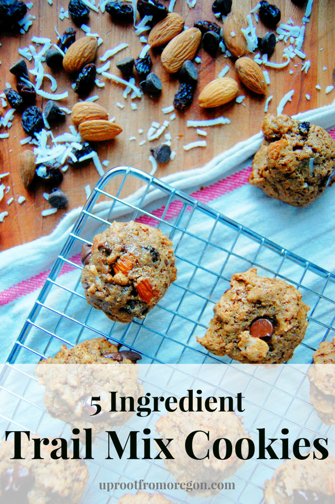5 Ingredient Trail Mix Cookies with an almond butter base   Uproot from Oregon