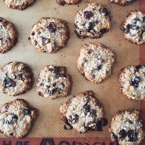 Paleo Cookies - via thelittlehoneybee.com
