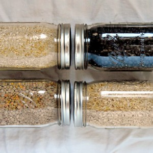 Grains To Buy in Bulk | uprootkitchen.com