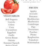 August Seasonal Produce List